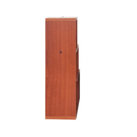 Gaja Furniture_ Wall Shelf_ GA-DWS-302_5